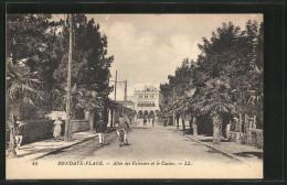 CPA Hendaye-Plage, Allee Des Palmiers Et Le Casino - Hendaye