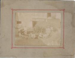 Photographie d'un groupe de paysan/Cour de Ferme: R�colte du Foin//1900-1910       PH118