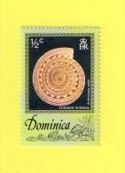 DOMINIQUE  ,,,, **  1/2  C ** ,,, ESCARGOTS DE MER 1976   ,,, NEUF SANS TRACE DE CHARNIERE - Dominique (1978-...)