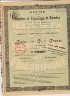 ACTION DE 100 FRANCS DES GLACIERES ET FRIGORIFIQUE DE GRENOBLE-1906 - Hist. Wertpapiere - Nonvaleurs