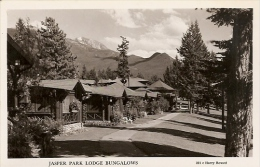 JASPER PARK LODGE BUNGALOWS CPA ANNE 1940 / 1950 GLACEE COULEUR CARTE NEUVE NON VOYAGE - Jasper