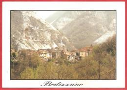 CARTOLINA VIAGGIATA ITALIA - BEDIZZANO - CARRARA - Panorama - Vue Generale -  ANNULLO LUCCA 1999 - Carrara