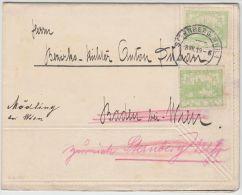00977 Hradcany 5 Hal Sternberg MHR 1919 To Baden Bei Wien Redirected To Mödling - Briefe U. Dokumente