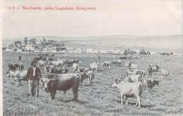 12 - Vacherie Près Laguiole - Sonstige Gemeinden