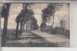 B 8620 NIEUWPOORT, Route De Dixmuide, Molen - Windmühle - Mill - Nieuwpoort
