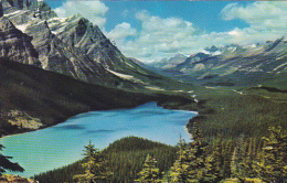 Canada Peyto Lake Canadian Rockies Alberta