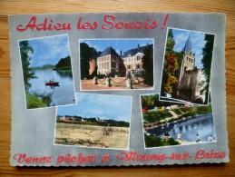 45 : Meung-sur-Loire - Adieu Les Soucis ! Venez Pêcher à Meung ... Pêcheurs - Château - Multivues / Multi Vues - (n°894) - Autres Communes