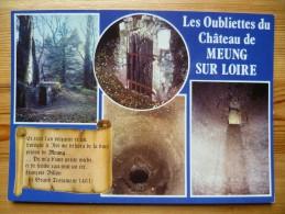 45 : Meung-sur-Loire - Les Oubliettes Du Château De Meung-sur-Loire - Multivues / Multi Vues - (n°897) - Autres Communes