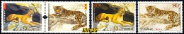 Canada - China Joint Issue 2005, Cats Of Prey - 2 Sets Of 2 V. MNH (**) - Gemeinschaftsausgaben