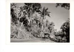 AMERIQUE---PANAMA----san Blas,nay-( Bus )-carte Photo  ??---voir 2 Scans - Panama