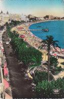 Carte Postale Des Années 50-60 De Cannes - La Promenade Et La Croisette - Cannes
