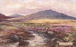 G.H. Jenkins - The Lyd Near Lydford On Dartmoor In Devon  -  7633 - Tuck, Raphael