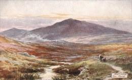 G.H. Jenkins - At Taw Marsh On Dartmoor In Devon  -  7633 - Tuck, Raphael