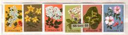 Bulgaria / Bulgarie 1981 Medicinal Plants  6v.- MNH - Planten