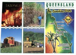 (468) Australia - QLD - Sugar Cane Museum - Bundaberg - Non Classés