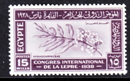 Egypt  232    *   MEDICINE  LEPROSY - Egypt