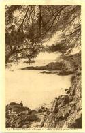 83/CPA A - Giens - La Baie Du Niel à Travers Les Pins - Frankrijk