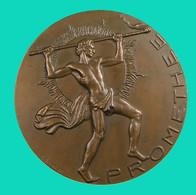 France -  Promethee - Métiers Du Feu -  Bronze - 1975 - TTB+ - Professionals / Firms