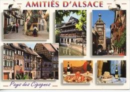 Amitiés D'Alsace Multivues Eguisheim Strasbourg Riquwhir Colmar Choucroute Kugelhopf Pays Cigognes - France