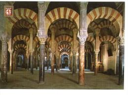 Cordoba - Mezquita Catedral - Laberinto De Columnas - Córdoba
