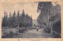 Genval  Parc Ornithologique L´avenue Centrale - Rixensart