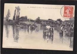 Passay - Un Coin Du Lac De Grand Lieu - Attelage Voiture A Chien - Lavandieres - France