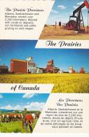 Canada The Prairies Of Canada Alberta Saskatchewan and Manitoba
