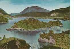 PENTOTHAL SODICO ABBOTT ESMERAL ISLES IRELAND IRLANDA MATASELLOS  LAKES OF KILLARNEY  RARE   Ohl - Publicidad