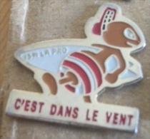 Pin´s Fourmi C´est Dans Le Vent - Badges