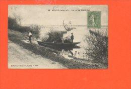 44 BOUAYE : Le Lac De Grand Lieu (en L'état: Pli Aux Coins Gauches) - Bouaye