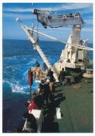 12 CPM Diverses - ILES KERGUELEN / Terres Australes TAAF - Photos André Fatras - TAAF : Terres Australes Antarctiques Françaises