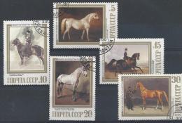 Russie, Joli Lot De Chevaux - Paarden