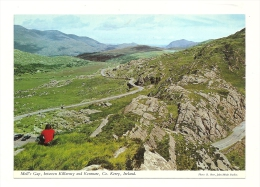 Cp, Irlande, Between Killarney And Kenmare, Moll's Gap - Kerry