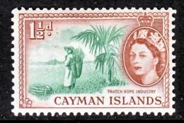 CAYMAN ISLANDS  138  *  ROPE INDUSTRY - Cayman Islands