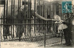 PARIS (05e Arr.) - Jardin Des Plantes - Le Gros Elèphant. Rue Cuvier. - Distretto: 05