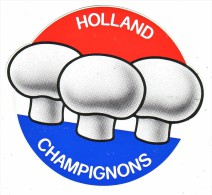 AUTOCOLLANT STICKER   HOLLAND CHAMPIGNONS - Aufkleber