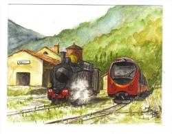 Chemin De Fer De Provence. Le Train à Vapeur Et Un Autorailmétrique De Provence(AMP), à Annot, En 2010 - Stations With Trains