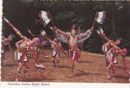 CHEROKEE INDIAN  EAGLE DANCE - Native Americans