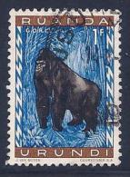 Ruanda-Urundi, Scott # 141 Used Gorilla, 1959 - Ruanda-Urundi