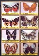 AJMAN PAPILLONS (serie 61/68).8 Valeurs Neuves Sans Charniere. MNH - Mariposas