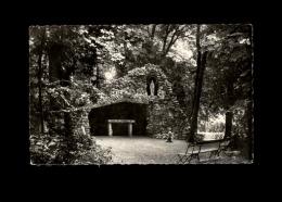 45 - LA CHAPELLE-SAINT-MESMIN - Maison De Convalescence - Grotte - France