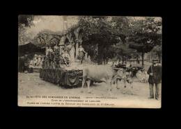 33 - FETE DES VENDANGES EN GIRONDE - Char De L'arrondissement De Libourne - France