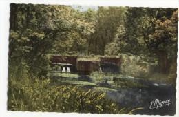 DORDIVES  - Les Bordsdu Loing. Le Pont Et Le Barrage De La Goulette.CPSM 9x14 - Dordives