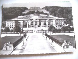 Oostenrijk Austria Österreich Wenen Wien Schloss Abend - Château De Schönbrunn