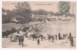 Le Moulin Blanc Près BREST - Brest