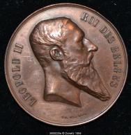 M00028 CH. WIENER Exposition Nationale En 1880 Et Léopold II Au Revers (48 Gr.) - Royal / Of Nobility