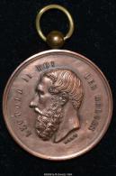 M00042 Société Agricole Horticole De Peruwelz Concours 1831 Et Léopold II Au Revers (24 Gr.) - Royal / Of Nobility