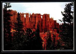 Bryce Canyon National Park - Wall of Windows - Circulated - Circul�. 1997.