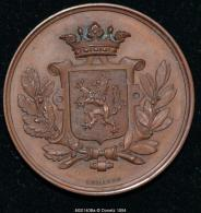 M00140B Gent Dankt De Onderwijzers, 1879 Et Blason De La Belgique Au Revers (30 Gr.) - België