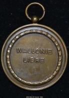 M00168 Wallonie Libre Et Coq Wallon Au Revers (26 Gr.) - Unclassified